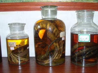 2014年生产的五步蛇酒 (13)