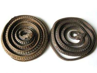 2012年生产的乌梢蛇干