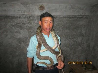 2014年10月份养蛇技术培训和蛇生长情况