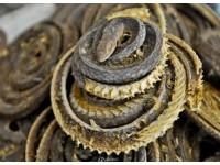 多款优质蛇干 长期批量供应