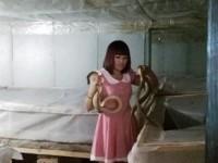 德阳85后女子创业 家中养蛇4000余条